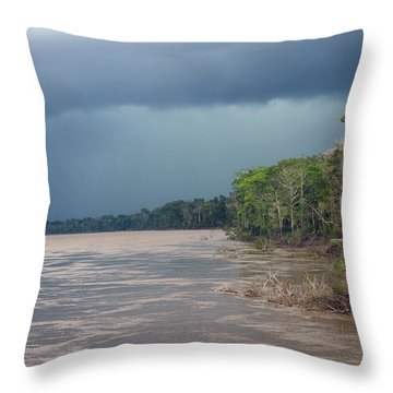 Amazonian Storm Study Number One Throw Pillow