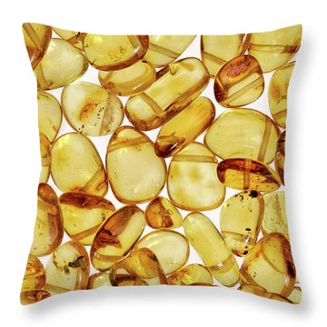 Amber #2h2a0902 Throw Pillow