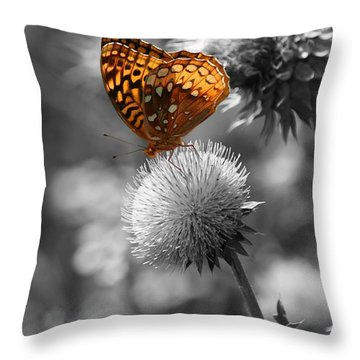 Amber Butterfly Colorized Throw Pillow