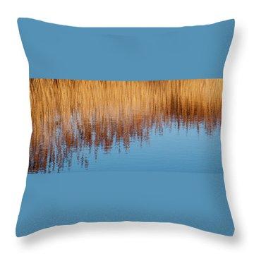 Amber Rush - Throw Pillow