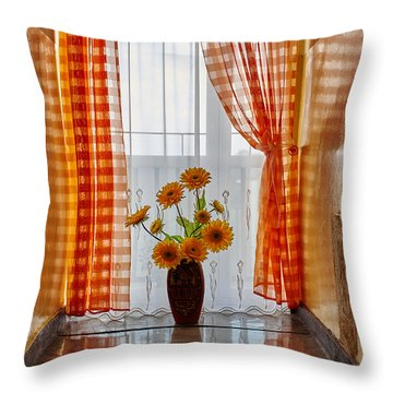 Amber View Throw Pillow