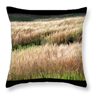Amber Waves -  Throw Pillow