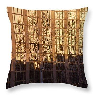 Amber Window Throw Pillow