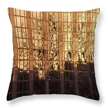 Amber Window Throw Pillow