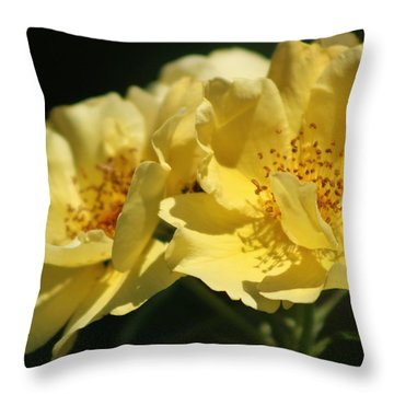 Amber Yellow Country Rose Throw Pillow