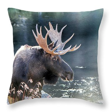 Ambling Along Throw Pillow