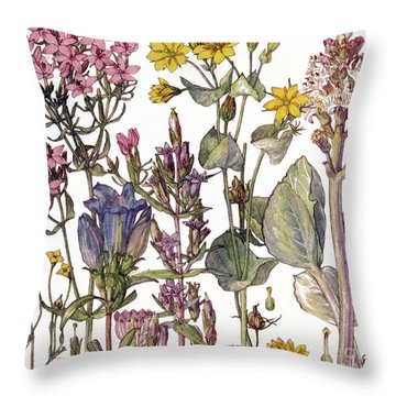 Sainfoin Throw Pillows