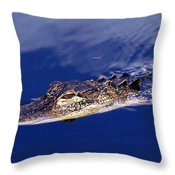 American Alligator 014 Throw Pillow