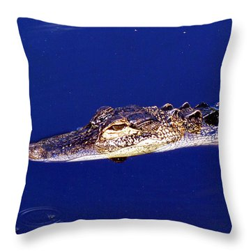 American Alligator 015 Throw Pillow