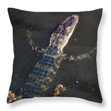 American Alligator 016 Throw Pillow