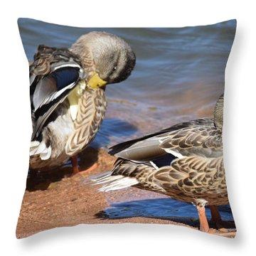 Throw Pillow featuring the digital art American Black Duck by Margarethe Binkley
