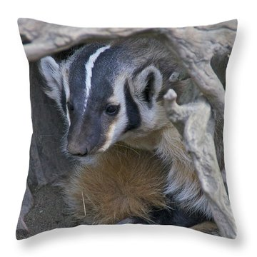 American Badger Habitat Throw Pillow