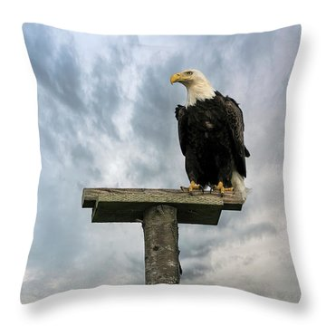 American Bald Eagle Perched On A Pole Throw Pillow