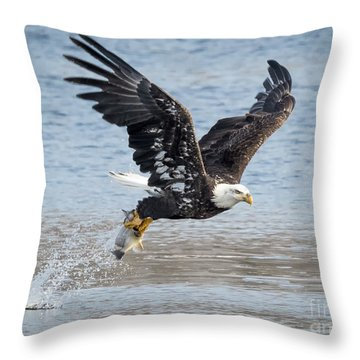 American Bald Eagle Taking Off Throw Pillow
