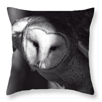 American Barn Owl Monochrome Throw Pillow