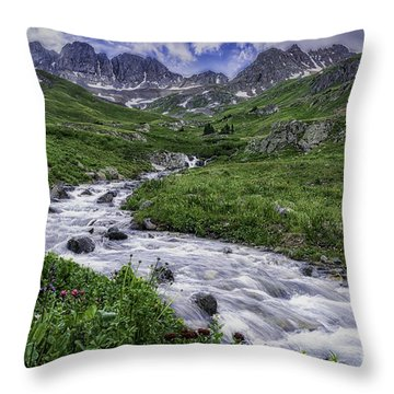 American Basin #2 Throw Pillow