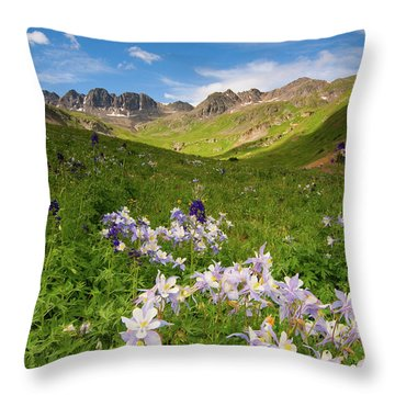 Throw Pillow featuring the photograph American Basin by Steve Stuller