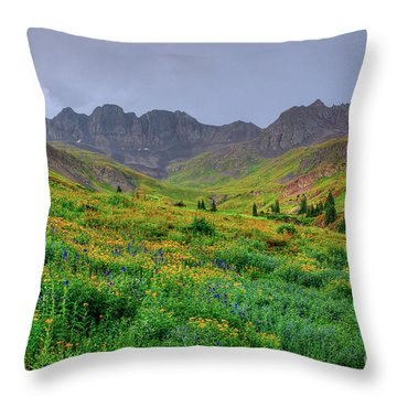 Throw Pillow featuring the photograph American Basin Summer Storm by Teri Atkins Brown