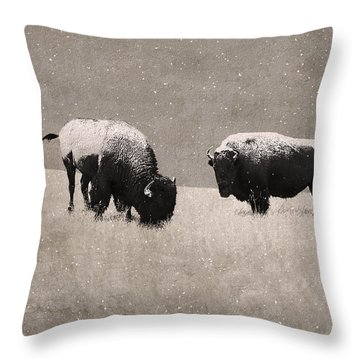 American Bison Throw Pillow by Ron Jones