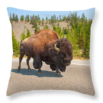 Throw Pillow featuring the photograph American Bison Sharing The Road In Yellowstone by John M Bailey