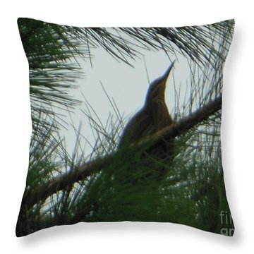 American Bitten Bird Throw Pillow