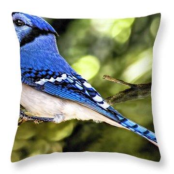 Blue Jay Bokeh Throw Pillow