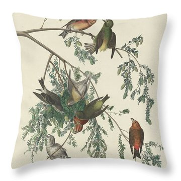 American Crossbill Throw Pillow