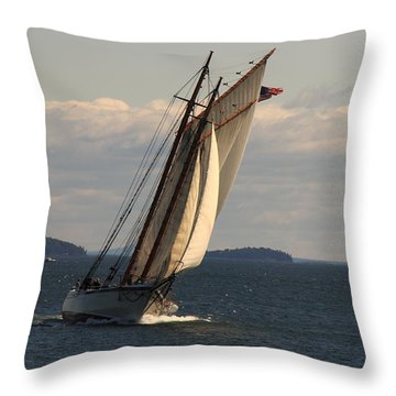 American Eagle In A Good Wind Throw Pillow