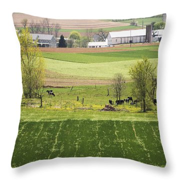 American Farmland Throw Pillow