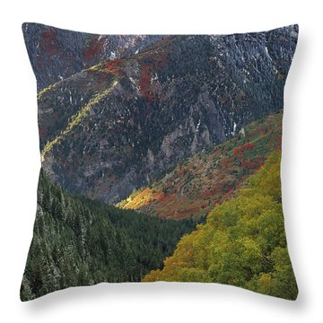 American Fork Canyon Throw Pillows