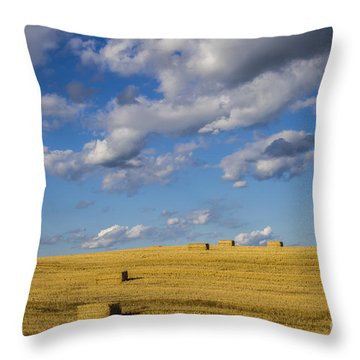 American Gold Throw Pillow