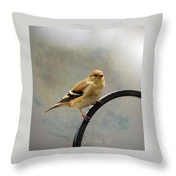 American Goldfinch Throw Pillow by Diane Giurco