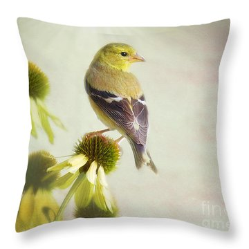 American Goldfinch On Coneflower Throw Pillow