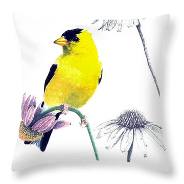 American Goldfinch On Coneflowers Throw Pillow