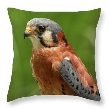 Throw Pillow featuring the photograph American Kestrel by Ann Bridges