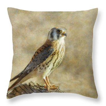 Throw Pillow featuring the photograph American Kestrel Portrait by Angie Vogel