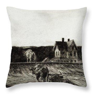 American Landscape Throw Pillow