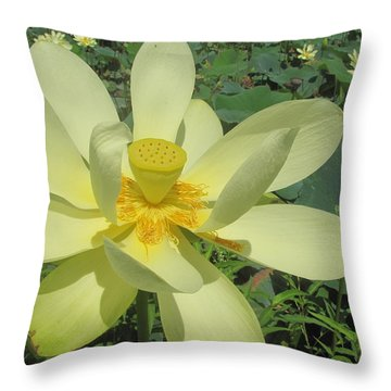 American Lotus Throw Pillow