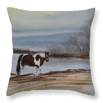 American Paint Throw Pillow