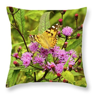 American Painted Lady Butterfly Throw Pillow
