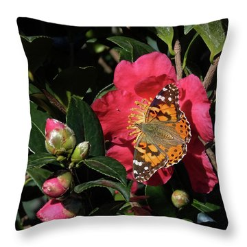 American Painted Lady On Camelia Throw Pillow