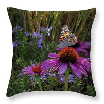 American Painted Lady On Cone Flower Throw Pillow