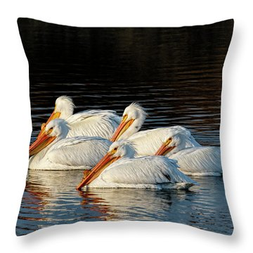 Throw Pillow featuring the photograph American Pelicans - 03 by Rob Graham