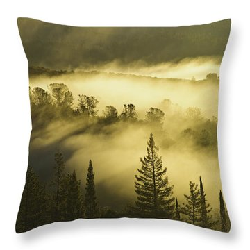 American River Canyon In The Fog Throw Pillow by Sherri Meyer