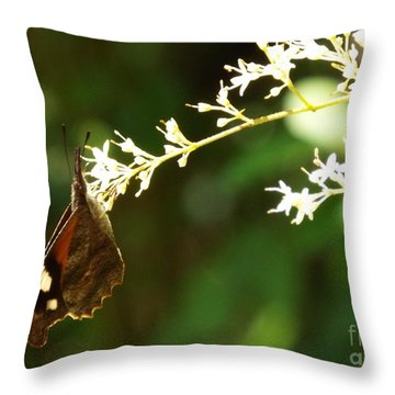 American Snout Throw Pillow