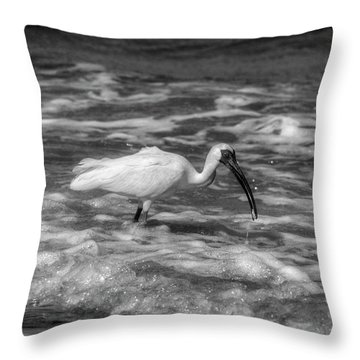 Throw Pillow featuring the photograph American White Ibis In Black And White by Chrystal Mimbs