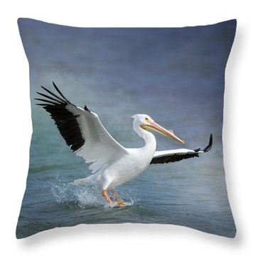 American White Pelican  Throw Pillow by Bonnie Barry