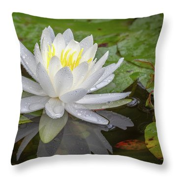American White Water Lily Throw Pillow