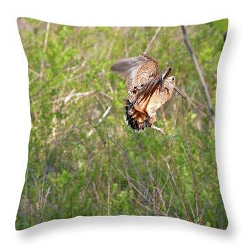 American Woodcock Behavior Throw Pillow