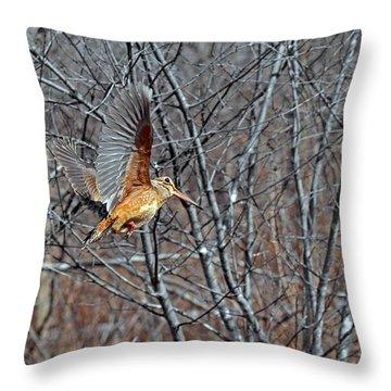 American Woodcock In Takeoff Flight Throw Pillow